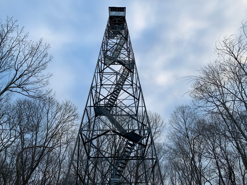 Ferncliff Forest observation tower