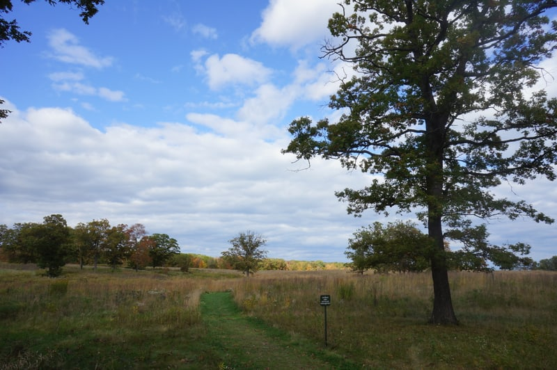 Fort Sheridan Forest Preserve